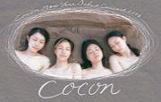 cocon (ここん)