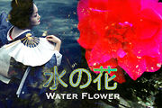 「水の花」Water Flower