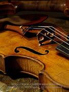 弦楽器は根気勝負!