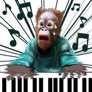 実はピアノ弾けるんです。