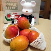 沖縄食文化