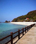 奄美大島で暮らしたい☆♪