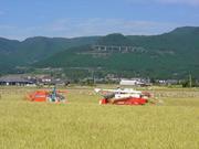 ◆宮崎県えびの市◆