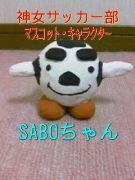 神戸女子大学サッカー部