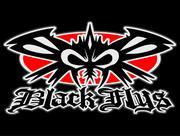 black flys☆ブラックフライ