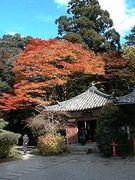 ☆京都の料亭に行きたい!!☆
