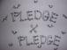 Pledge×Pledge