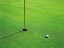 千葉でゴルフしませんか??