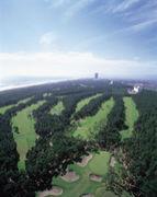 MGN −Miyazaki Golf Network−