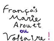 Voltaireとものかい