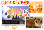 ペットサロンプルート  松戸店