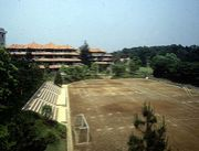 玉川小学部1986-7年生まれ