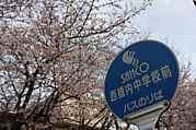 西橋内中学校同期会33〜34生