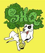 SHQ  (SugarHead Quarters)