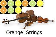 愛媛の弦楽器奏者
