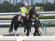 京都競馬場で競馬を楽しむ会