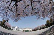 西田、松渓 Birth1988〜1989
