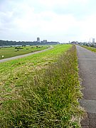 「yadokari」市