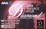 ANA  DIAMOND SERVICE