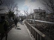 1980年代生まれ☆お散歩好き