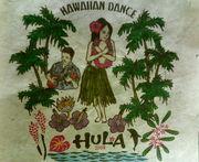 ALOHA de Surfing &ハワイアン