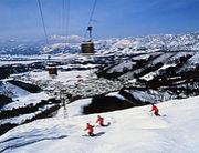 奈良大学競技スキー部