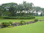 フィリピンでゴルフ/海外ゴルフ