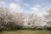 川中子公園