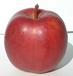 りんごリンゴ林檎