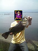 琵琶湖のブラックバスを叫ぶ!