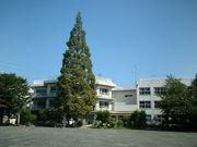 多摩第三小学校