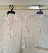 白シャツ愛好会