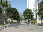 アモイ大学