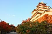 会津グルメ写真館