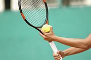 湘南シーガル テニス倶楽部