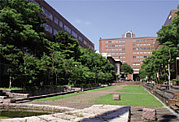 大阪産業大学2012年度新入生