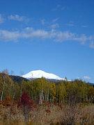 第三の道北海道