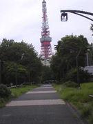 w-巡り(*´∀`*)