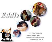 Eddie home page