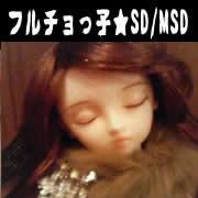 ☆フルチョっ子☆SD/MSD