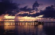 カープアイランドに行きたい!