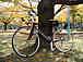 舞洲自転車部
