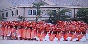 神戸女学生126回生★オレンジ