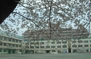 世田谷区立用賀小学校