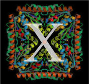 X線結晶構造解析