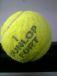 医学部テニス