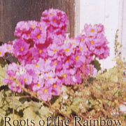 Roots of the Rainbow