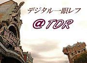 デジタル一眼レフ@TDR限定