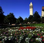 University of Nebraska - Omaha