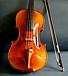 1001のバイオリン
